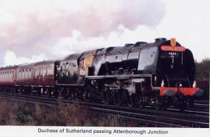 29 Duchess of Sutherland passing Attenborough Junction