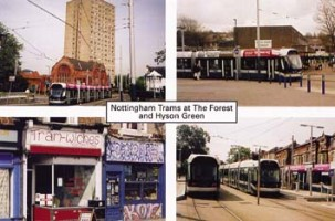 10 Trams at The Forest