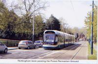 31 Nottingham tram passing Forest Recreation Ground