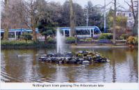 Tram passing Arboretum