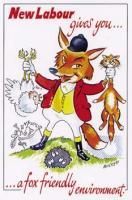 10 Fox-friendly environment